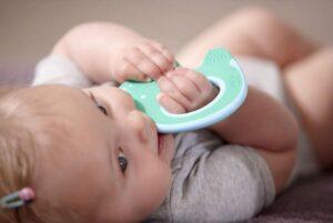 Малыш грызет игрушки (прорезыватель для зубов)
