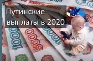 Путинские выплаты в 2020