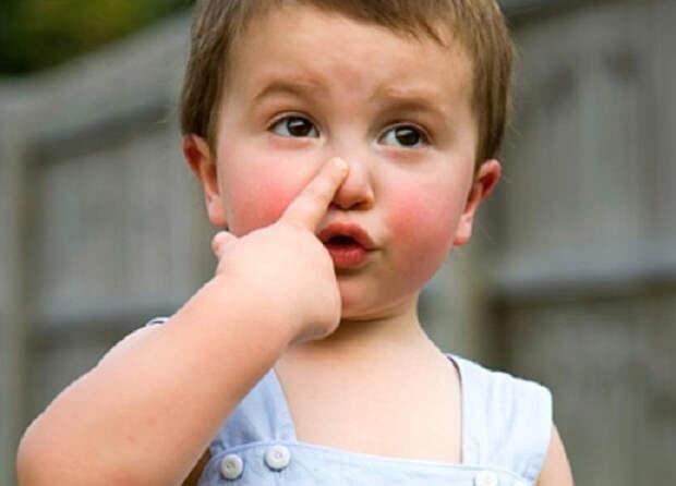 Почему пошла кровь из носа у малыша после падения?